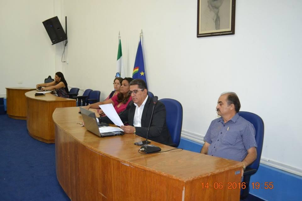 """Audiência Pública com o tema """"Responsabilidade do município quanto aos animais à solta nas ruas""""."""